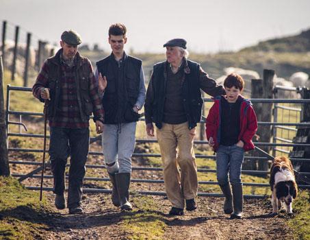 Farming learn English in Ireland
